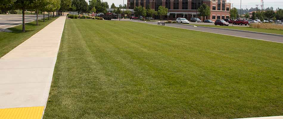 Recently mowed and fertilized commercial lawn in Spokane Valley, WA.